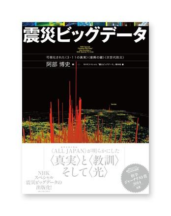 Disaster Big Data